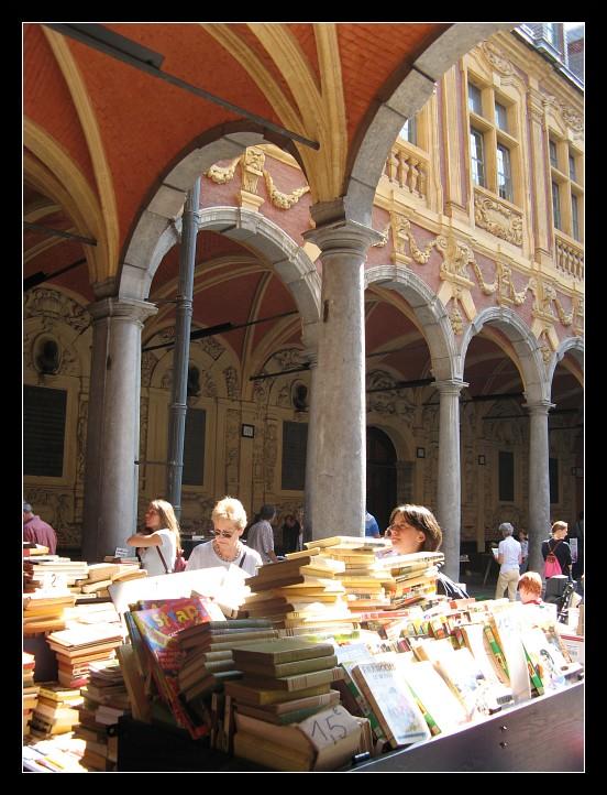 http://astrakoop.free.fr/lille/lille-centre/20060806-lille-31.jpg